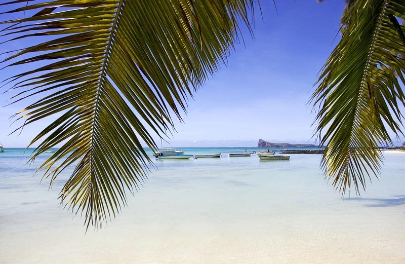 Fina stränder på Mauritius (Foto: Flickr/samovarincentive)